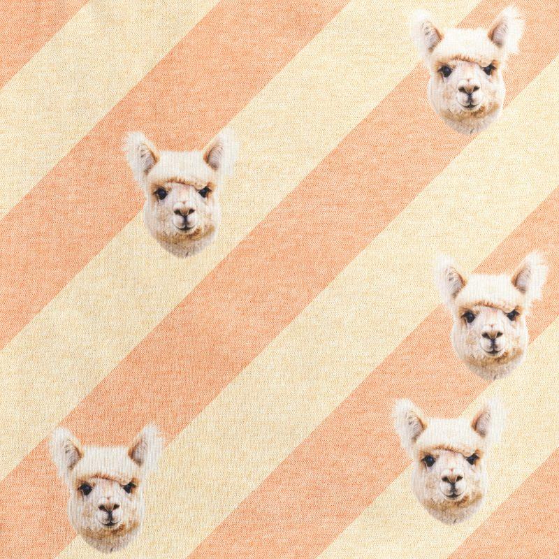 alpaca hoofden