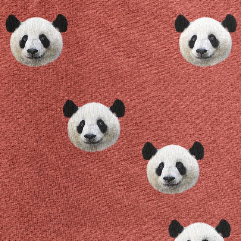 panda beren hoofden